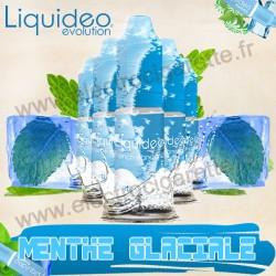 Pack de 5 flacons Menthe Glaciale French Standard - Liquideo