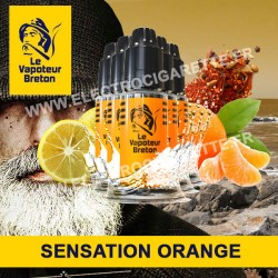 Pack de 5 x Orange - Sensation - Le Vapoteur Breton - 10 ml