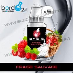 Pack de 5 x Fraise Sauvage - Basic - Bordo2
