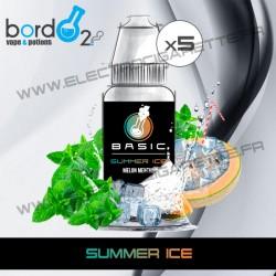 Pack de 5 x Summer Ice - Basic - Bordo2