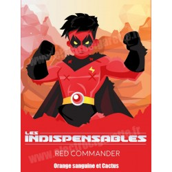 Pack de 5 x Red Commander - Les Indispensables - Le French Liquide