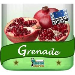 Grenade (Pomme-Grenade)