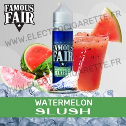 Watermelon Slush - Famous Fair - One Hit Wonder - ZHC 50ml