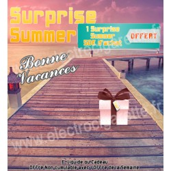 Surprise Summer - Offert - Non cumulable avec l'Offre de la Semaine