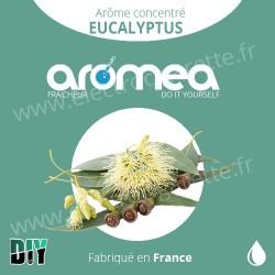 Eucalyptus - Aromea