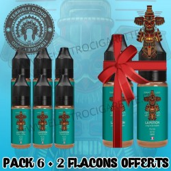 Pack 6 flacons + 2 offerts - Totem - Terrible Cloud - 10 ml