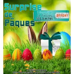 Surprise de Pâques - Offert